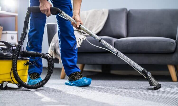 The 7 Best Carpet Cleaner Vacuums: A Buyer's Guide