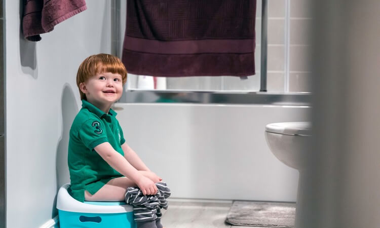 The 7 Best Potty Rings: Ideas For Child Guests