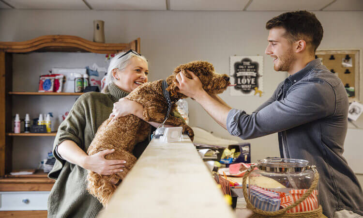 How To Open A Pet Hotel Business: Your Dream Career